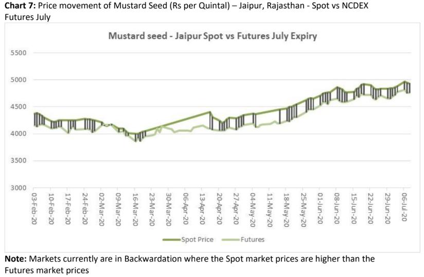 price movement of mustard seed in jaipur, rajasthan
