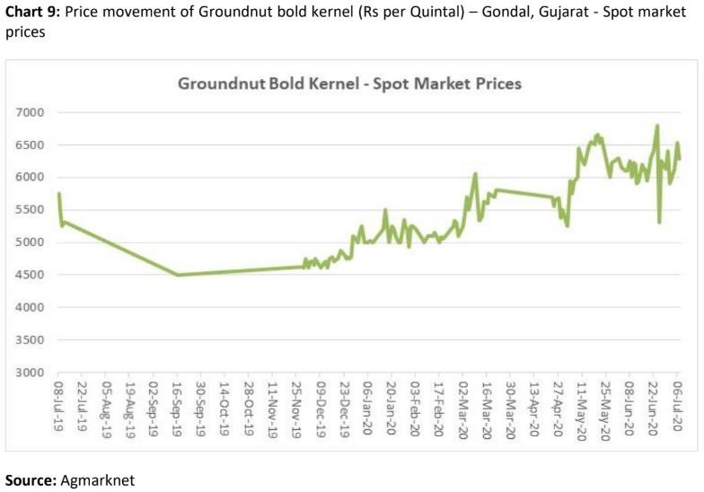 price movement of groundnut bold kernel in gondal, gujarat