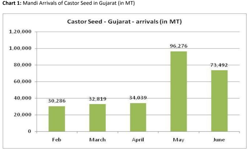 mandi arrivals of castor seed in gujarat