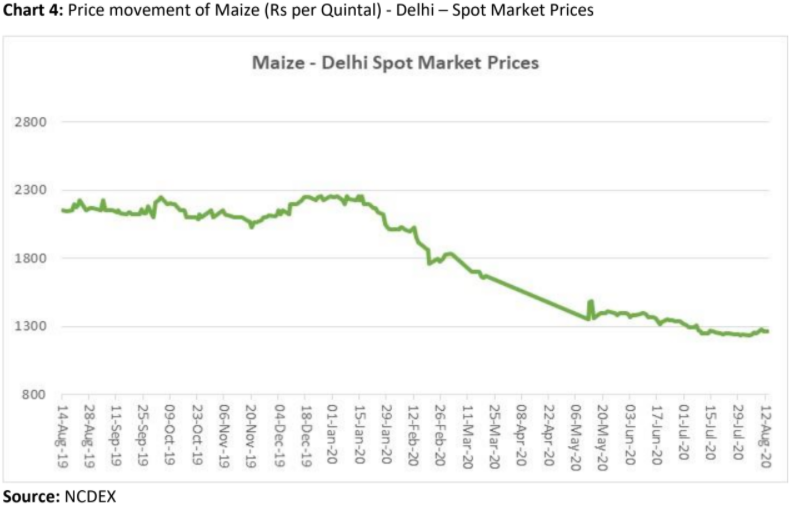 price movement of maize in delhi