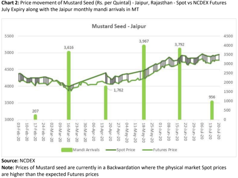 price movement of mustard seed along with monthly mandi arrivals in jaipur