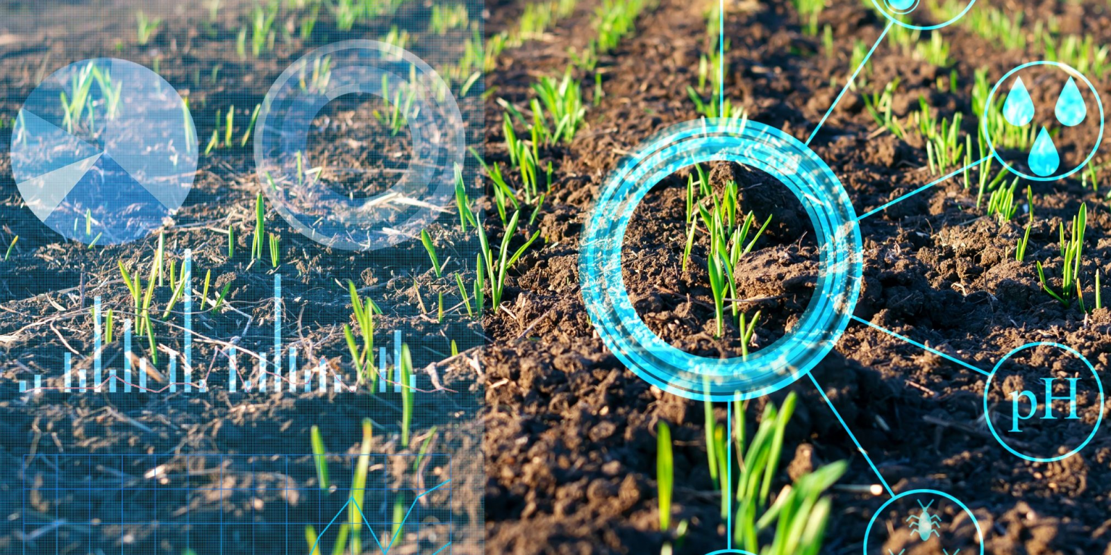 Block chain in Agriculture! Why not?