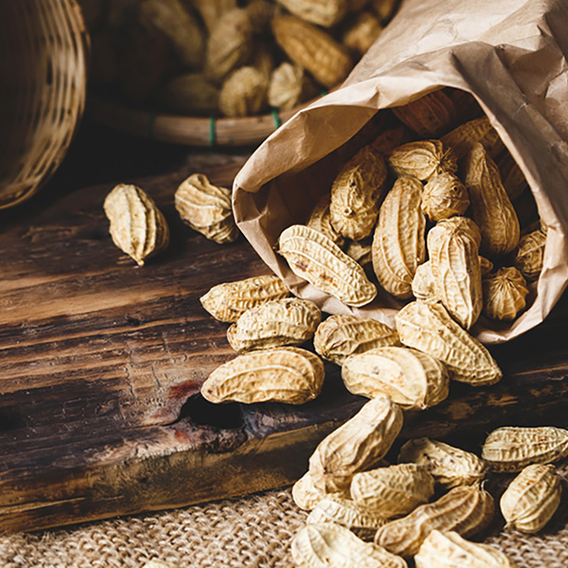 Commodity Outlook – Groundnut