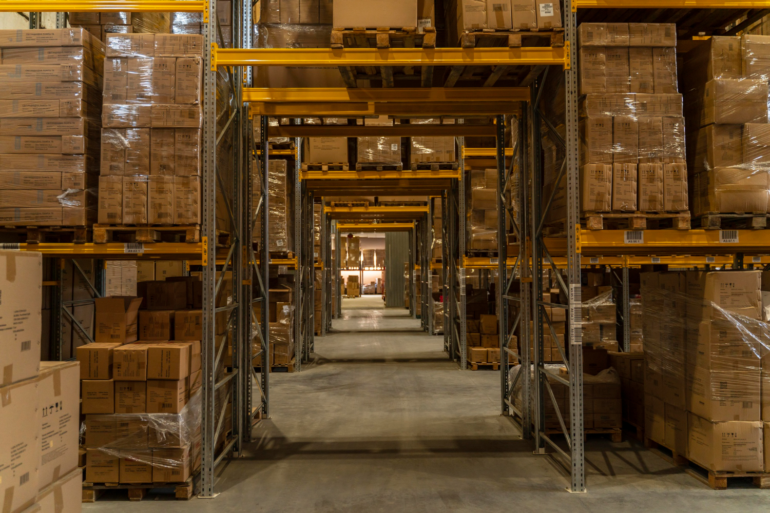 Introduction to Warehousing System in India